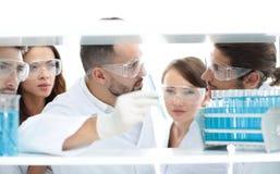 特写镜头工作在实验室里的医生药剂师和同事 免版税图库摄影