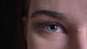 特写镜头年轻美丽的白种人fem,与看直接照相机的蓝眼睛的强麦酒面孔半面孔画象与 股票视频