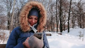 特写镜头愉快的妇女日间坐长凳和浏览手机在冬天公园在城市多雪的 股票视频