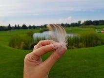 特写镜头手在背景中的举行在Background圆的湖的鸟羽毛和绿色草甸绿色风景 免版税库存图片