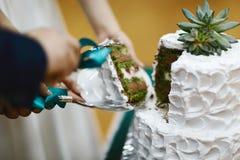 特写镜头新娘和新郎握他们的一起切与白色奶油的手婚宴喜饼和绿色花、薄菏和巧克力 免版税库存图片