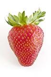 特写镜头新鲜的草莓 库存照片