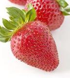 特写镜头新鲜的草莓 免版税库存图片