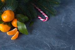 特写镜头柑橘 与绿色叶子的明亮的成熟蜜桔在dar 库存照片