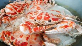 特写镜头煮沸的螃蟹,海鲜 免版税库存照片