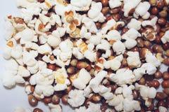 特写镜头玉米设计流行音乐工作 免版税图库摄影