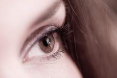 特写镜头眼睛女性 库存图片