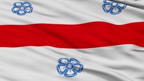 特写镜头米耶尔库雷亚丘克市旗子,罗马尼亚 库存例证