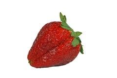 特写镜头红色草莓 库存照片