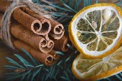 特写镜头肉桂条栓了并且烘干了柠檬切片,一棵蓝色杉树的分支,选择聚焦,宏指令 库存照片