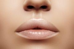 特写镜头肥满嘴唇 嘴唇关心,增广,补白 与面孔细节的宏观照片 与完善的等高的自然状态 免版税库存照片