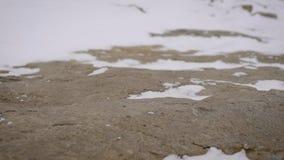 特写镜头被射击在重的起动和走在雪的徒步旅行者松紧鞋的徒步旅行者的在远足的腿和岩石 股票录像