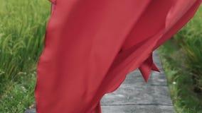 特写镜头,妇女` s身体的播种的框架,在有一把大弓的一件长的红色礼服穿戴在她 在框架 股票录像