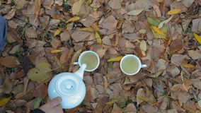 特写镜头,顶视图男性手倒从白色瓷茶壶的绿茶在下落的秋叶的站立的杯 股票录像