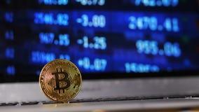 特写镜头Bitcoin模型继续增长反对世界降下 股票录像