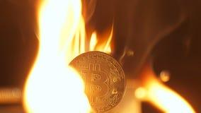 特写镜头Bitcoin烧毁并且落象交换率 股票录像