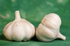 特写镜头garlics二 库存照片