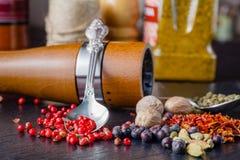 特写镜头、红色辣椒粉和香料 免版税库存图片