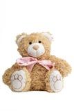 特写镜头一逗人喜爱teddybear与蝶形领结 免版税库存图片