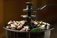 特写镜头与绿色叶子的咖啡豆 免版税库存图片
