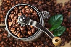 特写镜头与绿色叶子的咖啡豆 免版税库存照片