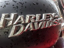 特写镜头充分哈利戴维森摩托车汽油箱雨dro 免版税库存照片