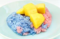 特写镜头变粉红色的和蓝色甜黏米饭用成熟芒果,泰国点心 免版税库存照片