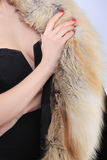 特写镜头在毛皮衣领的妇女手 库存照片