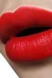 特写镜头完善的自然嘴唇构成 在女性面孔的美丽的肥满充分的嘴唇 清洗皮肤,新构成 温泉嫩嘴唇 免版税库存图片