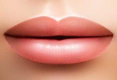 特写镜头完善的自然嘴唇构成 在女性面孔的美丽的肥满充分的嘴唇 清洗皮肤,新构成 温泉嫩嘴唇 免版税图库摄影