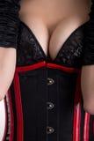 特写镜头射击了束腰和胸罩的大乳房迷信妇女 库存照片