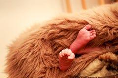 特写镜头小新出生的婴孩脚 免版税库存图片