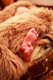 特写镜头小新出生的婴孩脚 免版税库存照片