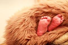 特写镜头小新出生的婴孩脚 图库摄影