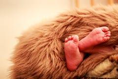 特写镜头小新出生的婴孩脚 库存图片