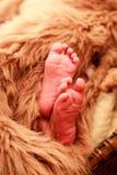 特写镜头小新出生的婴孩脚 库存照片