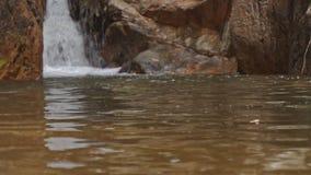特写镜头山河瀑布在光秃的石头中落 股票视频