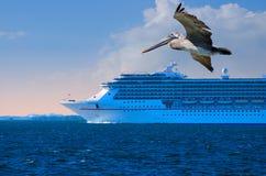 特写镜头巡航前景鹈鹕船 免版税图库摄影
