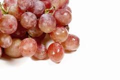 特写镜头成熟红色水多的葡萄 库存照片