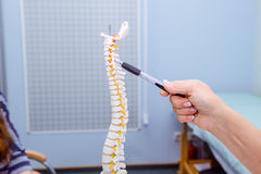 特写镜头指向在子宫颈脊椎模型的医生妇女 是概念现有量有医疗保健帮助延迟药片 选择聚焦 免版税图库摄影