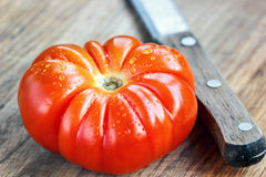 特写镜头新鲜,湿,成熟,红色,与刀子的蕃茄在切板 免版税图库摄影