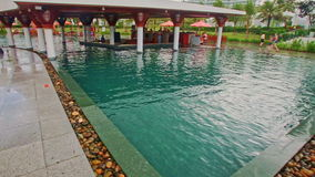 特写镜头旅馆中间阳伞的游泳池亭子 股票视频