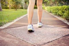 特写镜头概念英尺健身凹凸部跑腿者跑鞋日出健康妇女锻炼 库存图片
