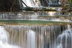 特写镜头泉水小瀑布在深森林里 免版税库存照片