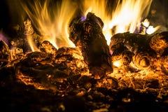特写镜头火在晚上 库存图片