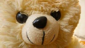 特写镜头玩具熊 免版税库存图片