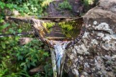 特写镜头竹自然喷泉 免版税库存图片
