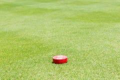 特写镜头红色标志显示100码在绿色高尔夫球cou的距离 库存图片