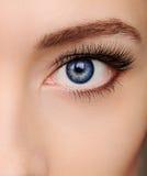 特写镜头美丽的蓝色妇女眼睛 免版税图库摄影