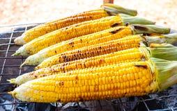 特写镜头黄色玉米 免版税库存图片